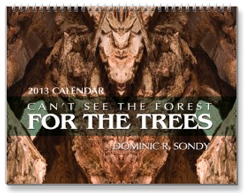Can't See The Forest For The Trees 2013 Calendar